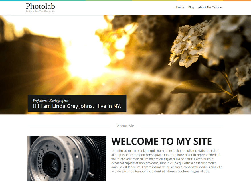 7 Free TemplateMonster Premium WordPress Themes with PSD | GeekAct
