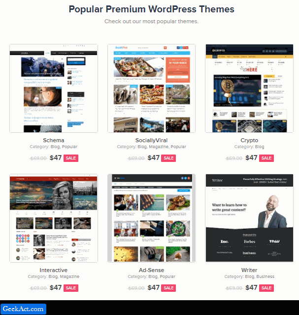 mts wordpress themes discount